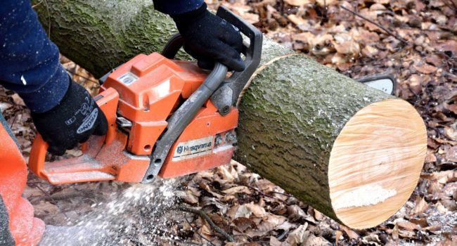 cutting-wood